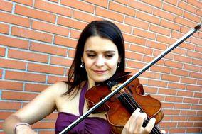 Violino Casamentos