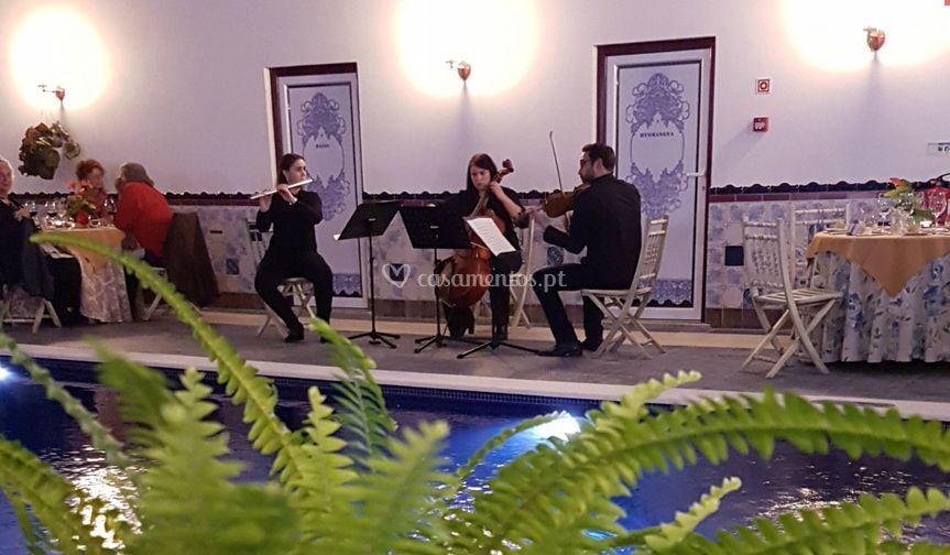 Viv'arte ensemble trio