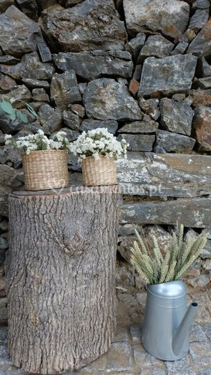 Some rustic details