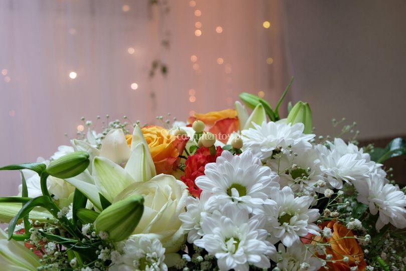 S&a flores