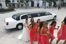 Vip Service Limousines