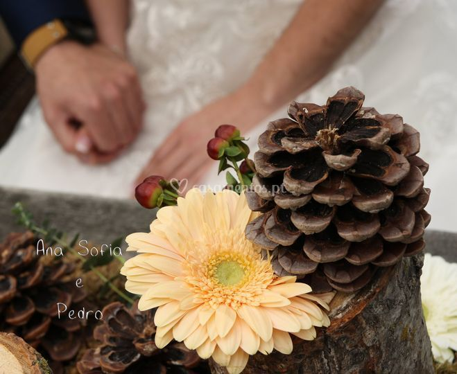 Wedding Ana Sofia e Pedro