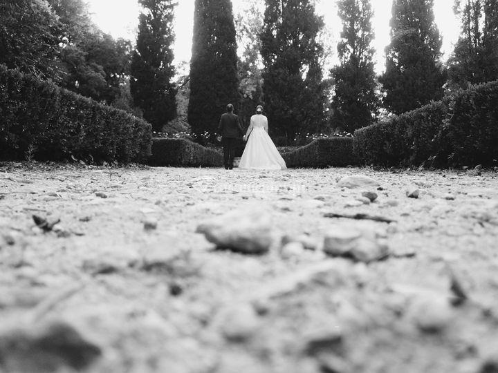 Wedding Catarina e Marco
