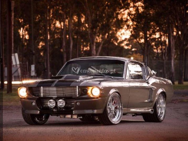 Buggy Mustang