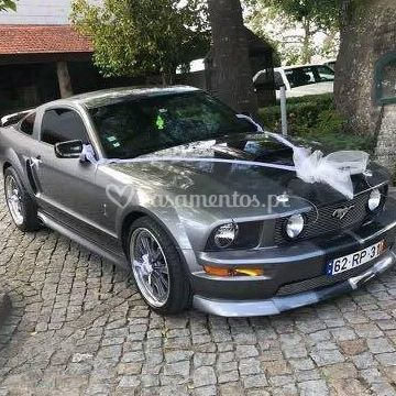 Gt 500 supercharged