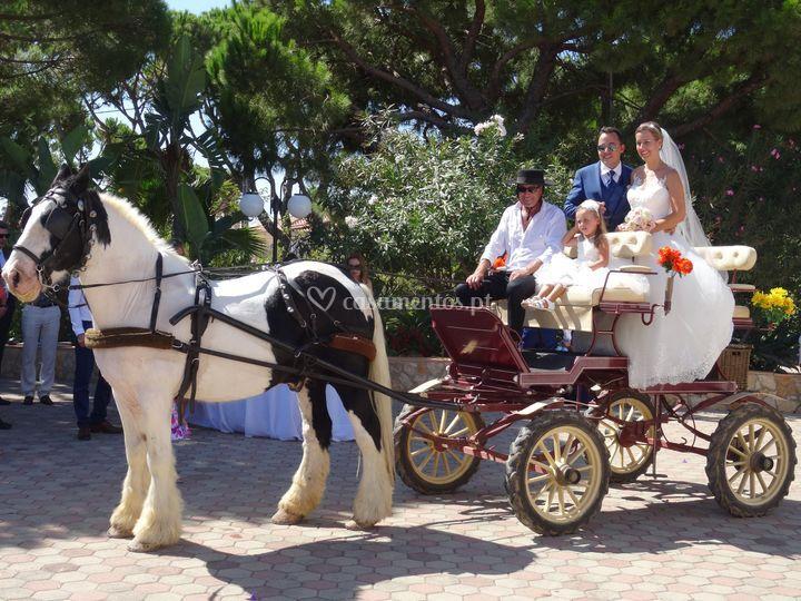 Chegada dos noivos na charrete