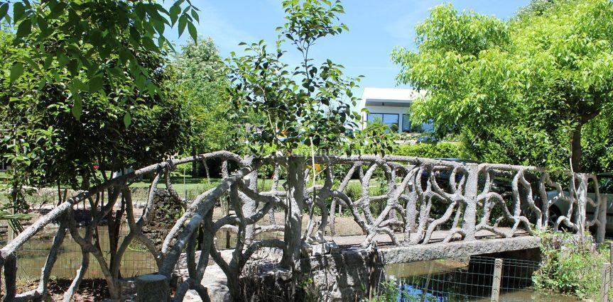 Ponte no jardim com lago