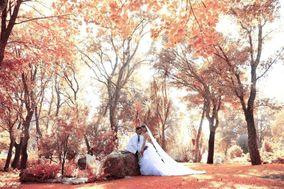 Quinta da Telhada