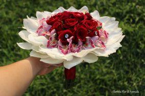 Florista Flor d'Avenida