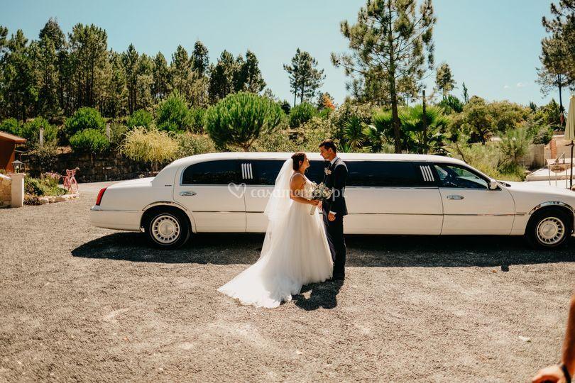 Limousine I & P