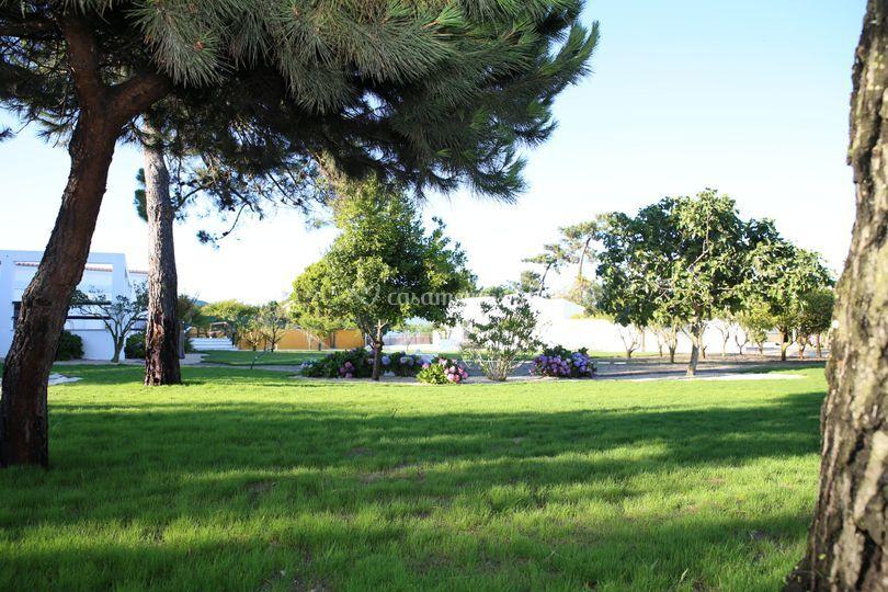 Jardim - área Tenda