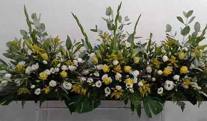 Florista Acquarela