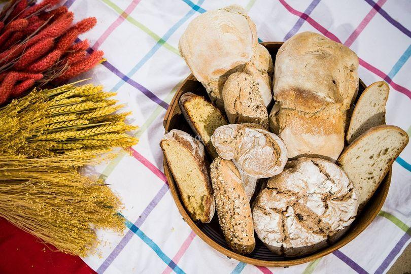 Variedade pão
