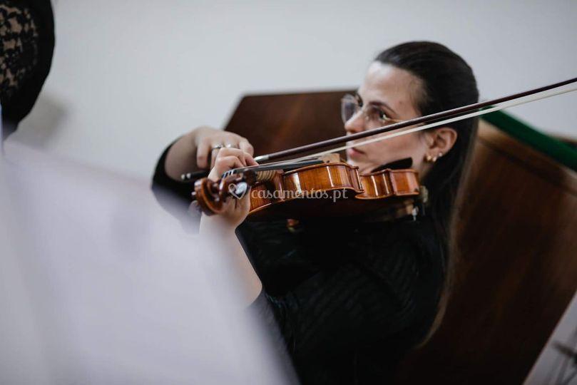 Bellart - Eventos Musicais