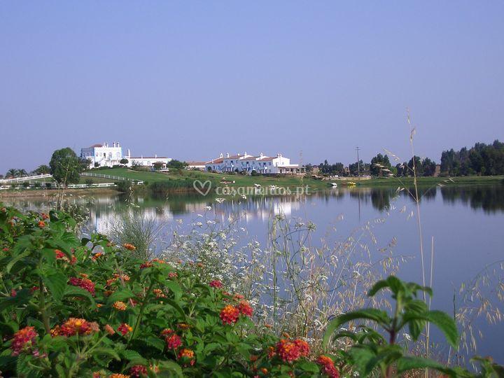 Lago dos grous