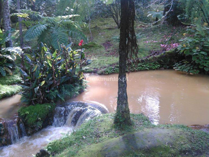Halcon Açores