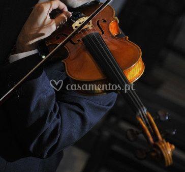 Violino - MusiCasamentos