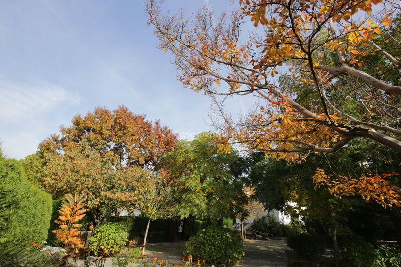 Quinta do Terreiro