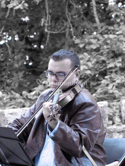 Johann Velislav Pereira -Viola