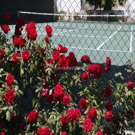 Court de Tenis