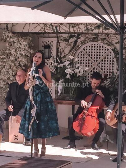 Voz  e trio romântico