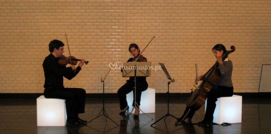 Concerto - Trio