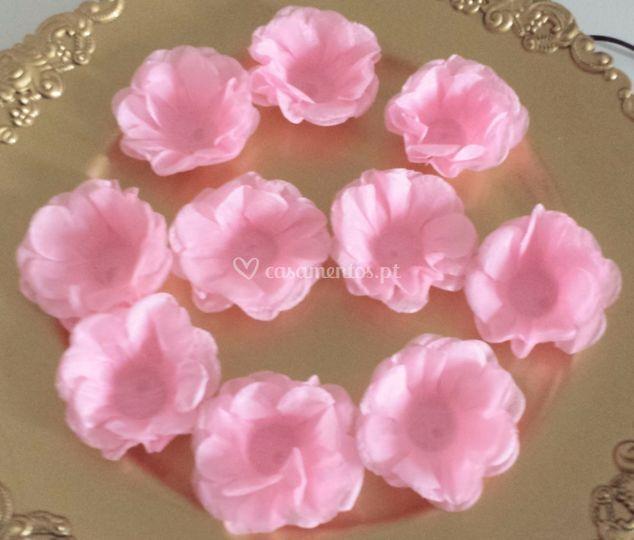 Folher Rosas