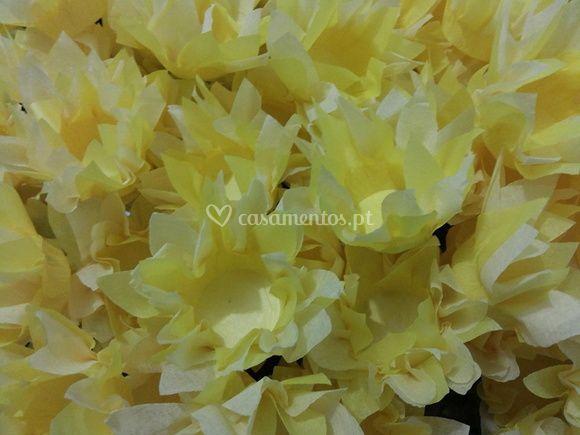 Girassol Amarelo/Branco