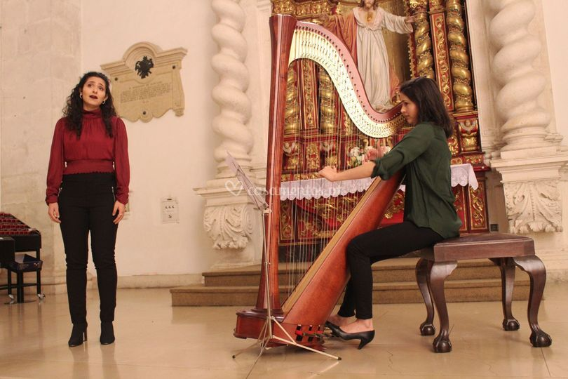 Canto e harpa