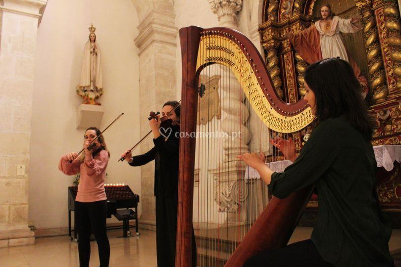 Violinos e harpa