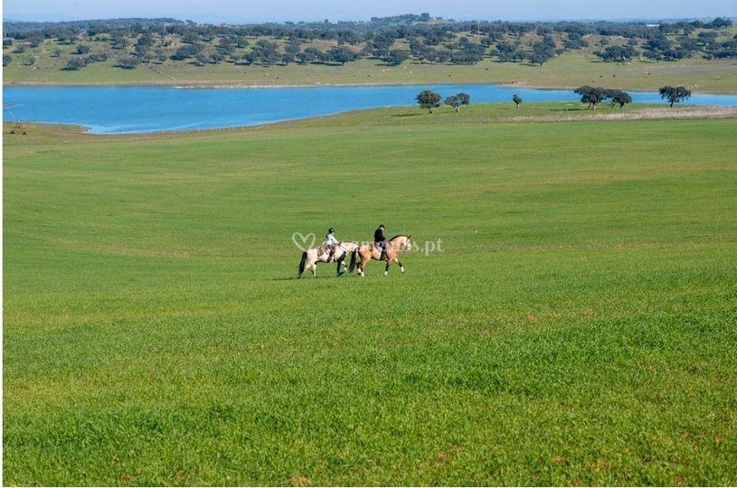 Vista do campo