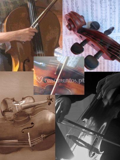 Música ao vivo em eventos