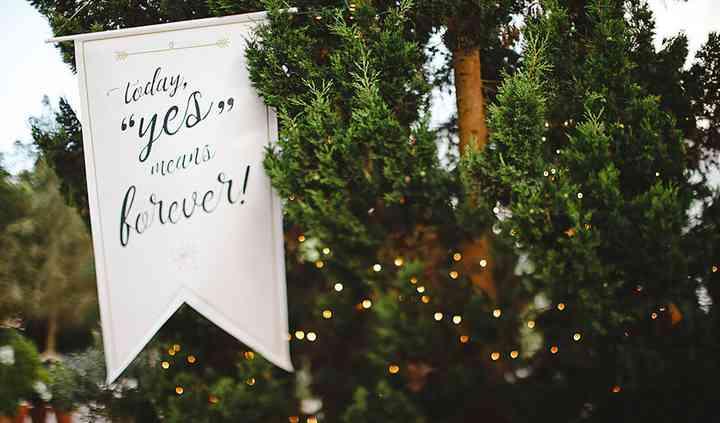 LS Love Stories Weddings