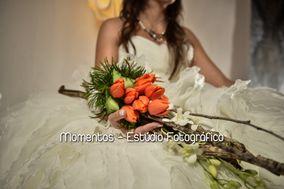 Arte&Flor - Flores de corte e plantas
