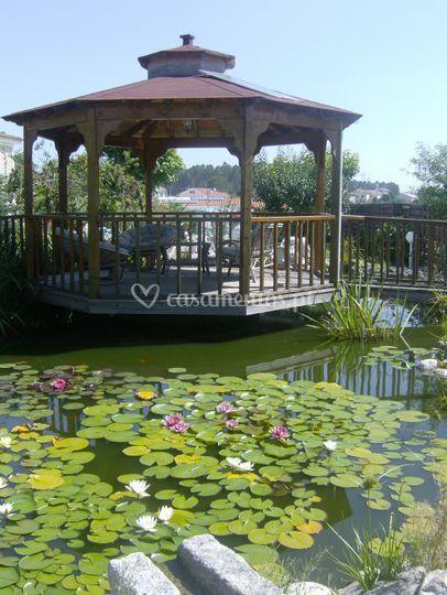 O lago dos cisnes