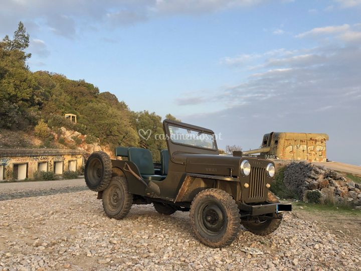 Willys CJ3