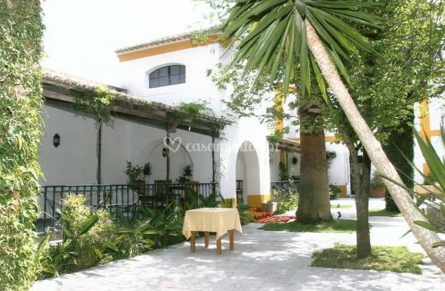 Sala das Palmeira