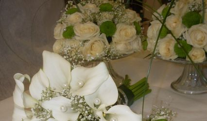 Ali Flores 1