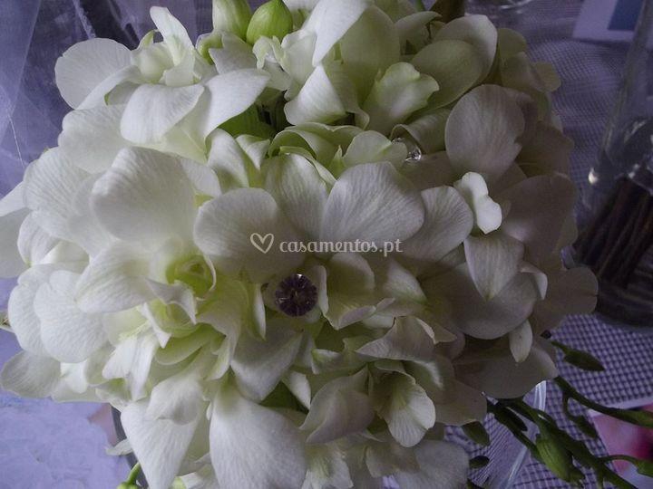 Ramo com Dendrobium
