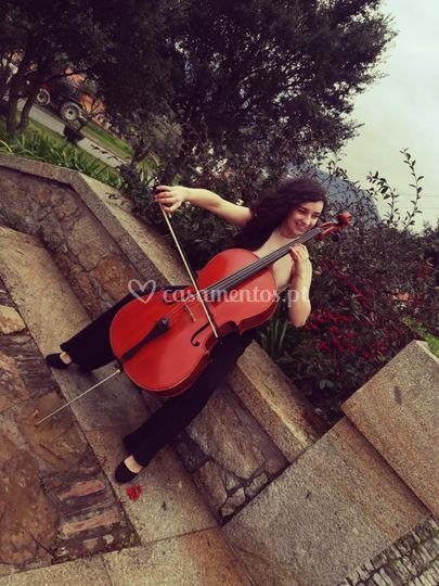 Carpe Diem Ensemble-violcelist