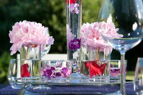 Maria Luis  Arte Floral Decoração Eventos
