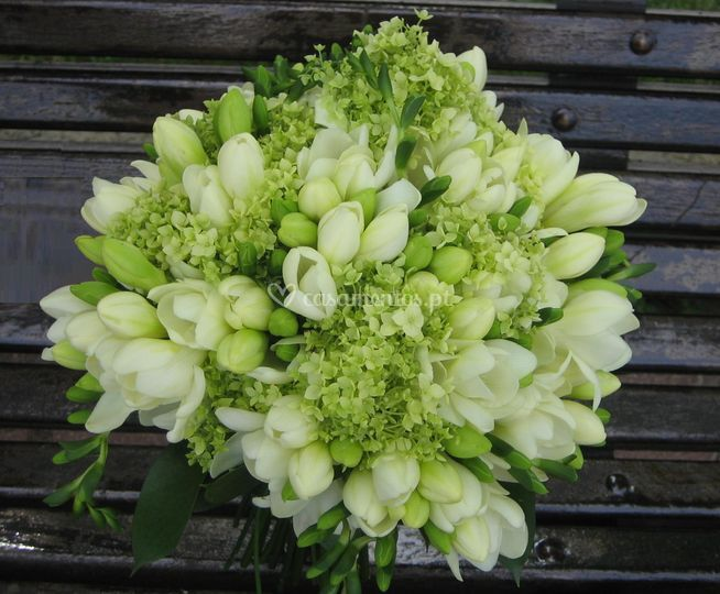Bouquet de fresias