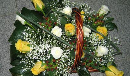 Florista Fresias 1