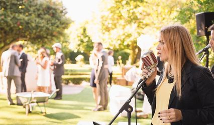 Wedd - Music & Events