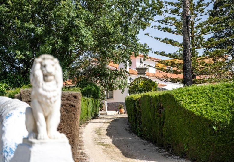 Quinta da Tojeira