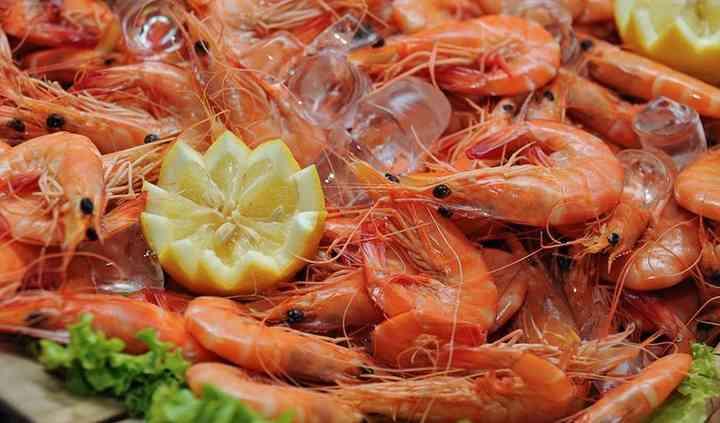 Buffet de frutos do mar