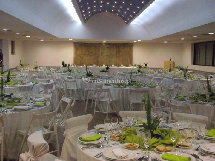 Decoração de sala com verdes