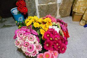 Florista Abreu