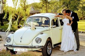 Wedd'In Limo