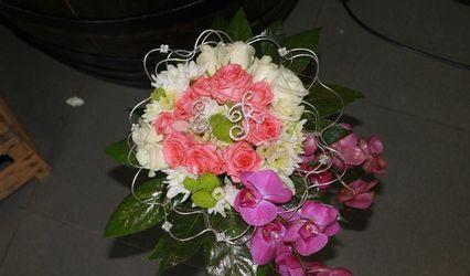 Florista Papoila 1